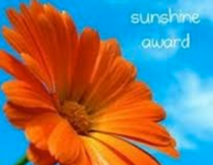 The Sunshine Blogger award goes to bloggers who inspire you to create!